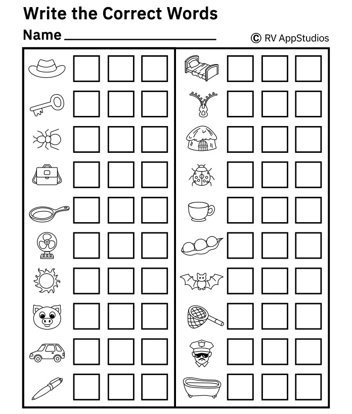 Free Printable Worksheets for Kids - Look at the Picture and Write Correct Word Worksheets